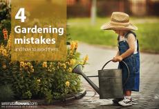 gardeningmistakes