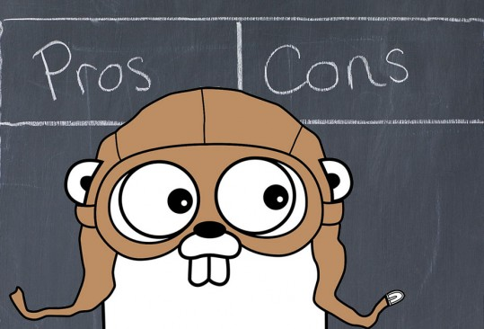 go-pros-cons